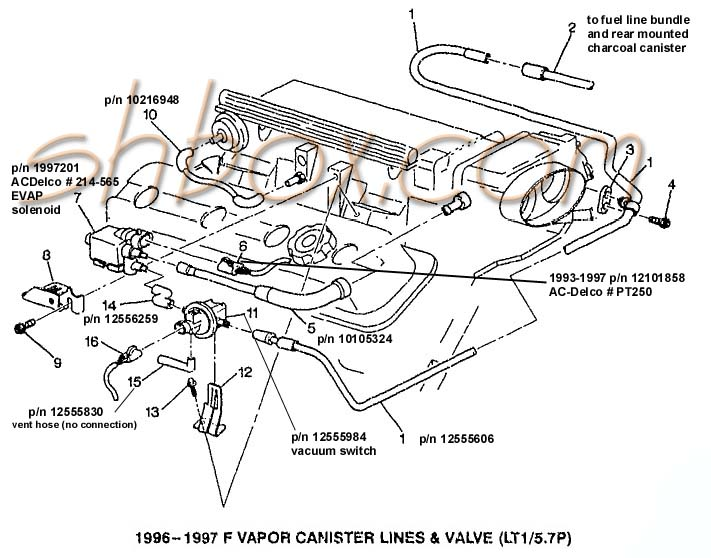1995 camaro engine diagram data wiring diagram update96 camaro engine diagram wiring diagram 1995 chevy camaro engine diagram 1995 camaro engine diagram