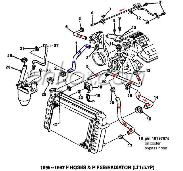 lt1 swap radiator hose questions  with diagram for future reference
