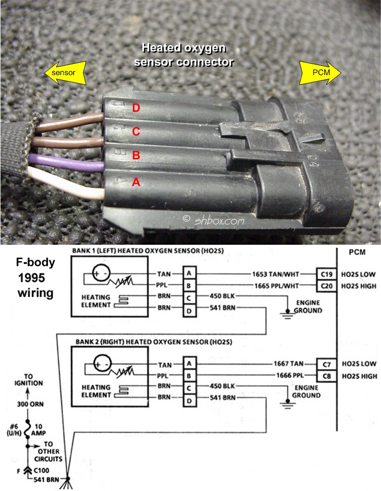 Ho S Connector on Lt1 Engine Wiring Harness Diagram