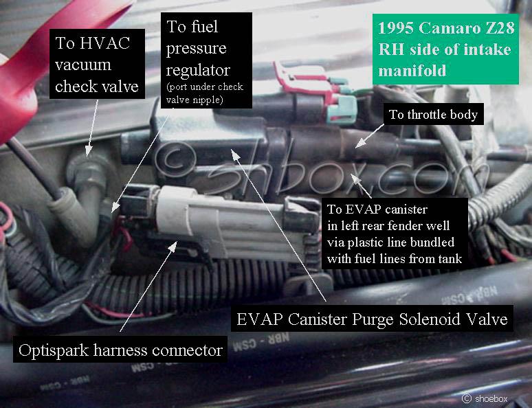 Car Cranks Won T Start Chevy Impala SS Forum